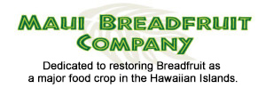 Maui Breadfruit Company | Pono Pies, Maui 'Ulu Hummus, Breadfruit